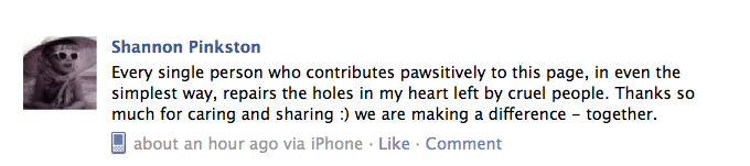 A photo of a positive comment left on our Facebook networking page
