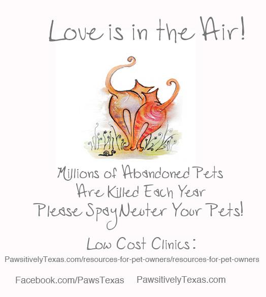 Spay Neuter Pets_Paws Texas