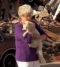Cat Reunited with Tornado Victim Owner