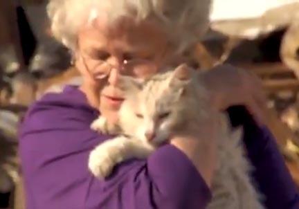 Missing Cat Reunion