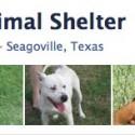 Seagoville-Facebook-Page