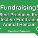 Best Practices-Fundraising