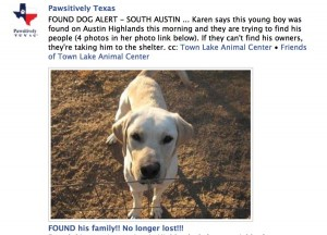 Networking pets saves lives austin lab