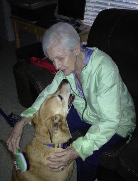 Molly rescue dog photo