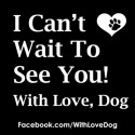 Dog can't wait to see you image