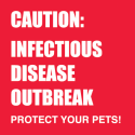 Infectious Disease Outbreak Threatens Pets
