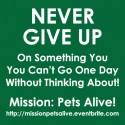 Never Give Up Mission Something You Can't Go One Day Without Thinking About Pets Alive