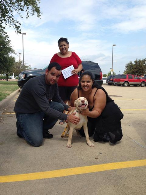 Dog Adopted From Seagoville, TX Animal Shelter