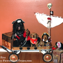 Talk Like A Pirate Day - Cute Pirate Dogs