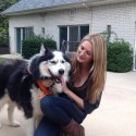 Husky Dog Saved Through Networking on Pawsitively Texas Facebook page