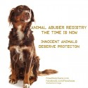 Animal Abuser Registry Legislation