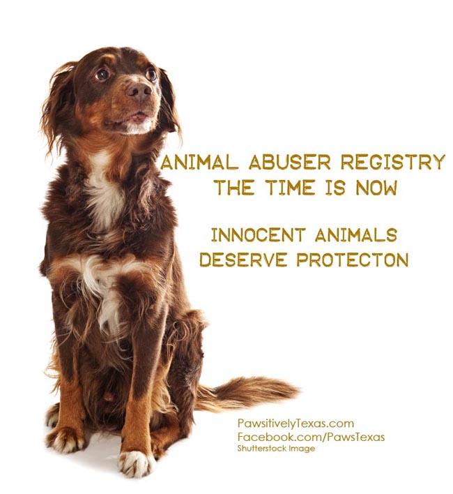 Animal Abuser Registry Legislation