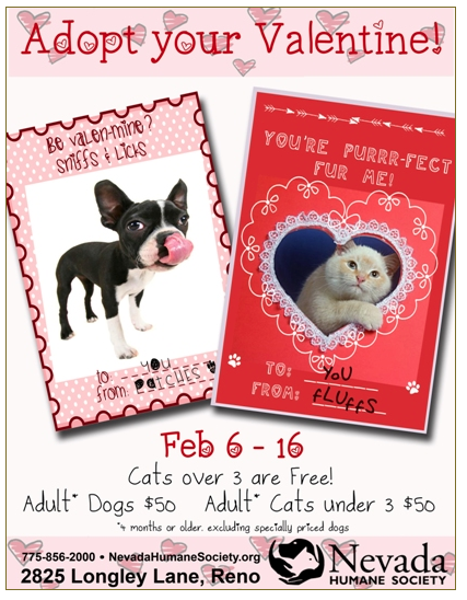 Adopt Your Valentine Pet Adoption