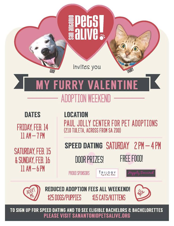 Furry Valentine Pet Adoption Weekend Poster
