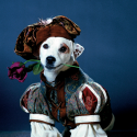 Pet Names Inspired by Shakespeare